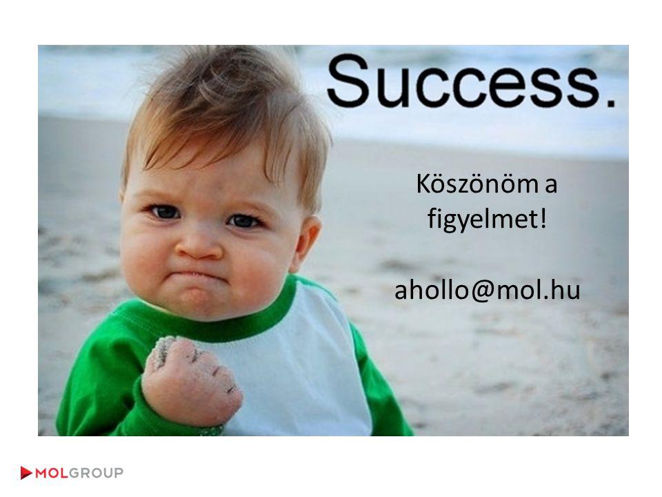 Köszönöm a figyelmet! ahollo@mol.hu