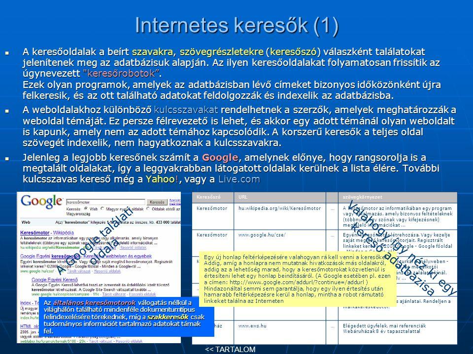 Internetes keresők (1) A Google találati oldala
