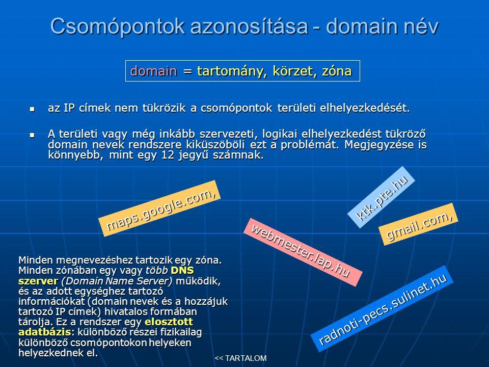 Csomópontok azonosítása - domain név