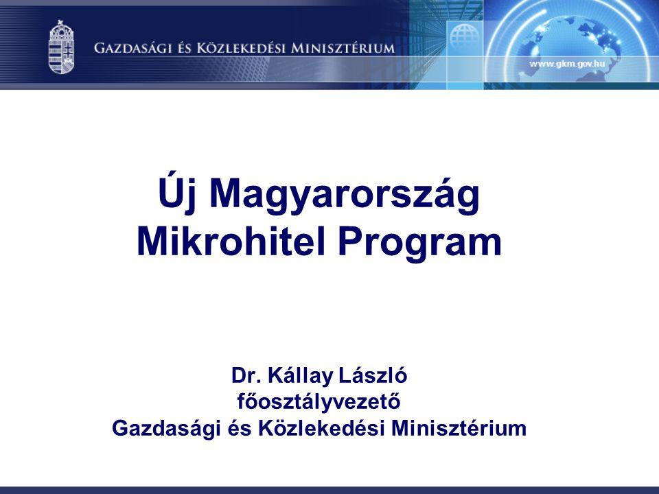 Új Magyarország Mikrohitel Program Dr