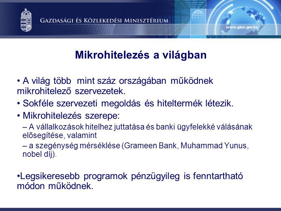 Mikrohitelezés a világban