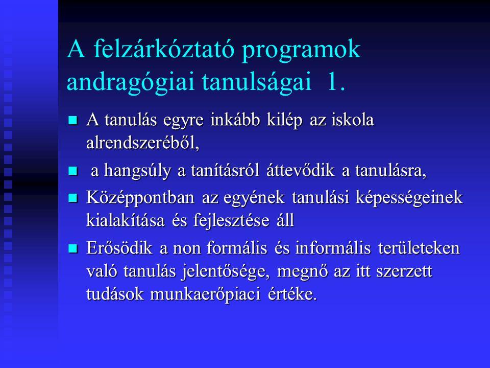 A felzárkóztató programok andragógiai tanulságai 1.