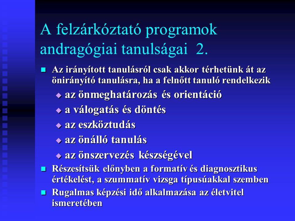 A felzárkóztató programok andragógiai tanulságai 2.