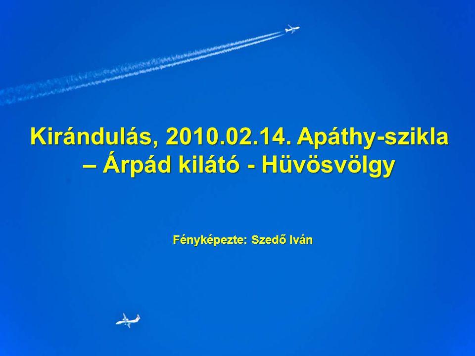 Kirándulás, 2010.02.14. Apáthy-szikla – Árpád kilátó - Hüvösvölgy