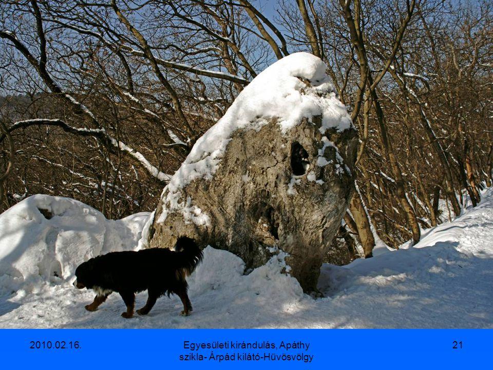 Egyesületi kirándulás, Apáthy szikla- Árpád kilátó-Hüvösvölgy