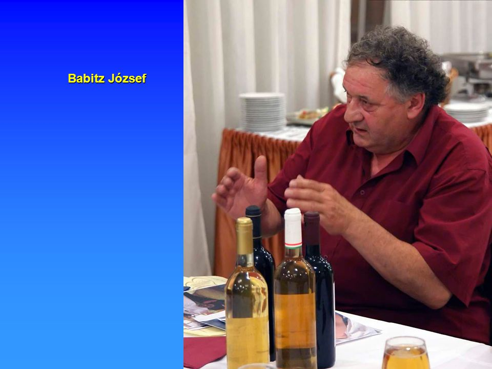 Babitz József