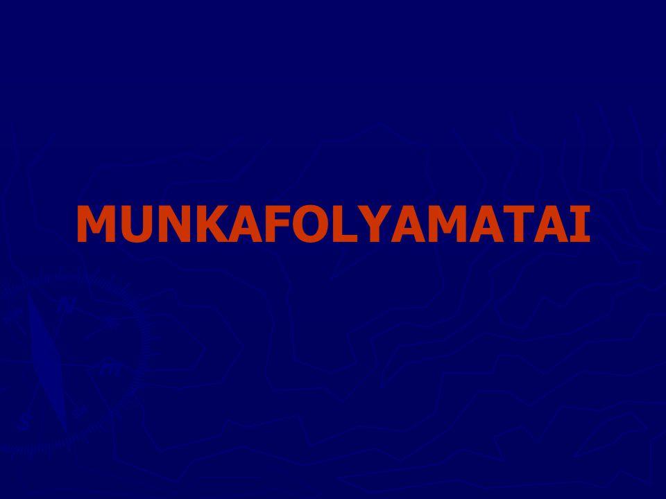 MUNKAFOLYAMATAI