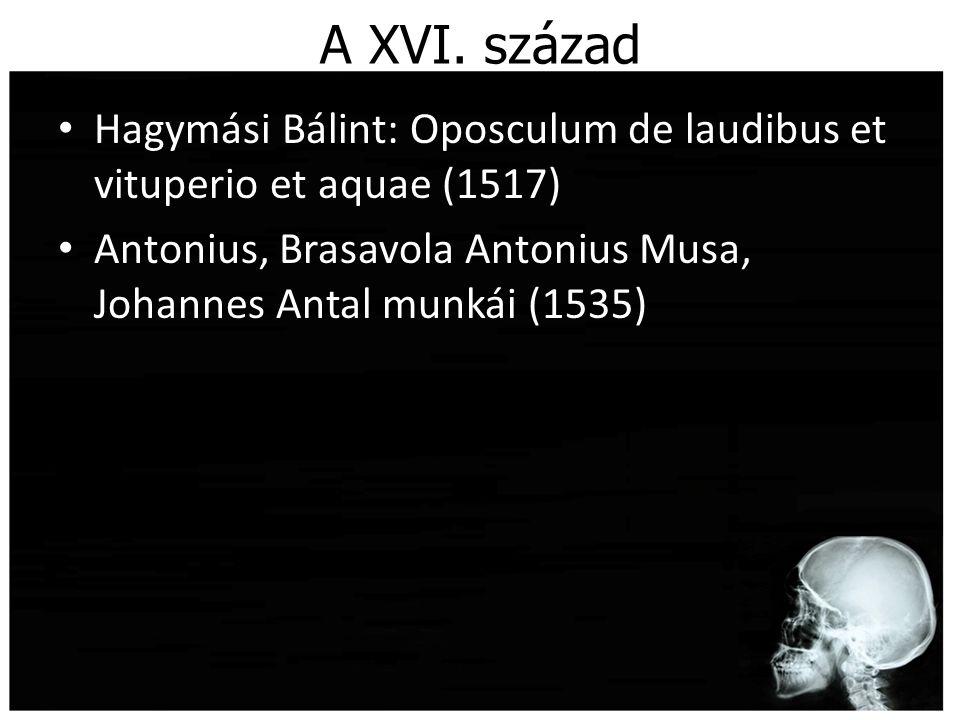 A XVI.