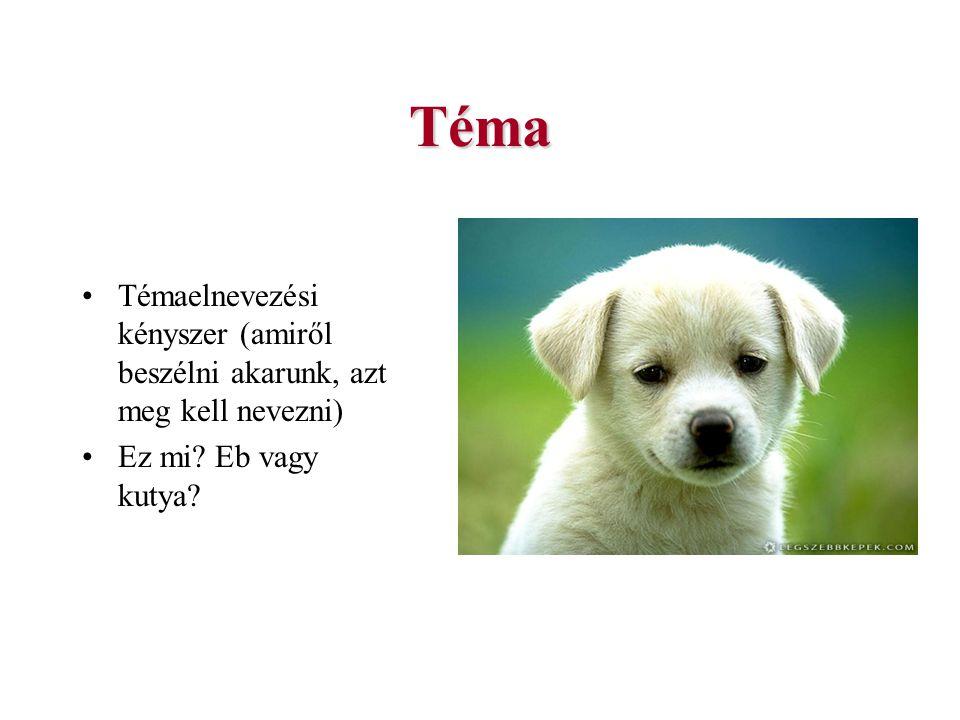 Téma Témaelnevezési kényszer (amiről beszélni akarunk, azt meg kell nevezni) Ez mi Eb vagy kutya