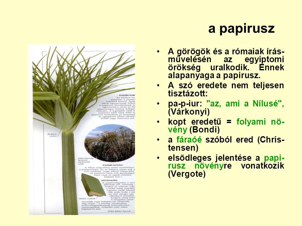 a papirusz A görögök és a rómaiak írás-művelésén az egyiptomi örökség uralkodik. Ennek alapanyaga a papirusz.