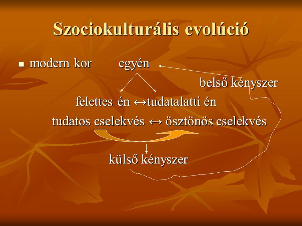 Szociokulturális evolúció