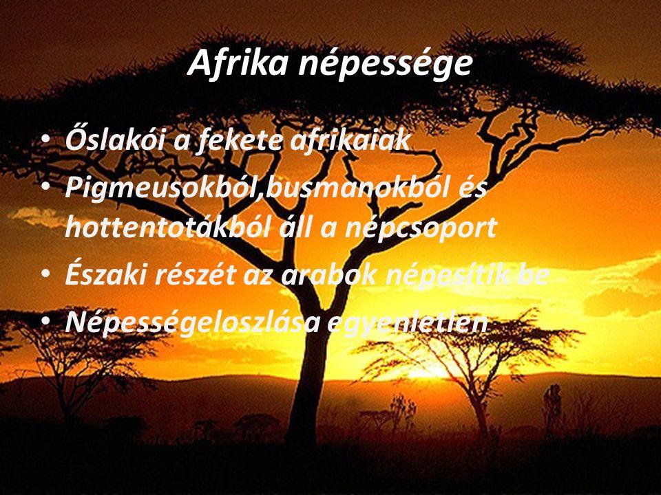 Afrika népessége Őslakói a fekete afrikaiak