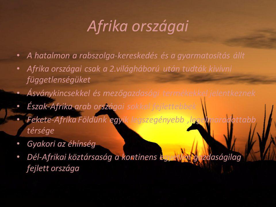 Afrika országai A hatalmon a rabszolga-kereskedés és a gyarmatosítás állt. Afrika országai csak a 2.világháború után tudták kivívni függetlenségüket.