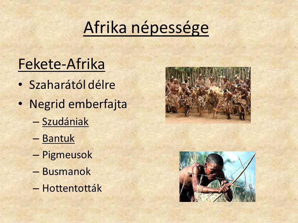 Afrika népessége Fekete-Afrika Szaharától délre Negrid emberfajta