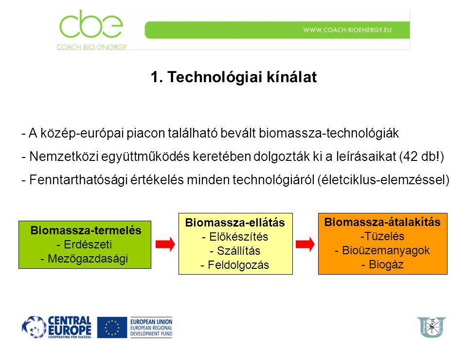 Biomassza-átalakítás