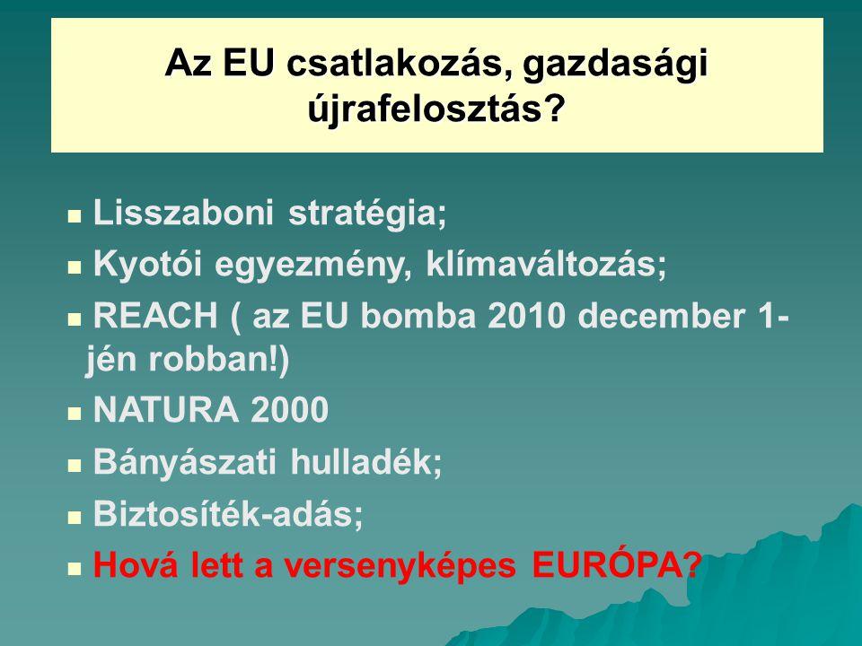 Az EU csatlakozás, gazdasági újrafelosztás