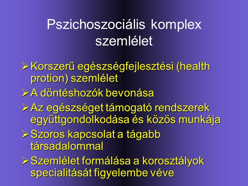 Pszichoszociális komplex szemlélet