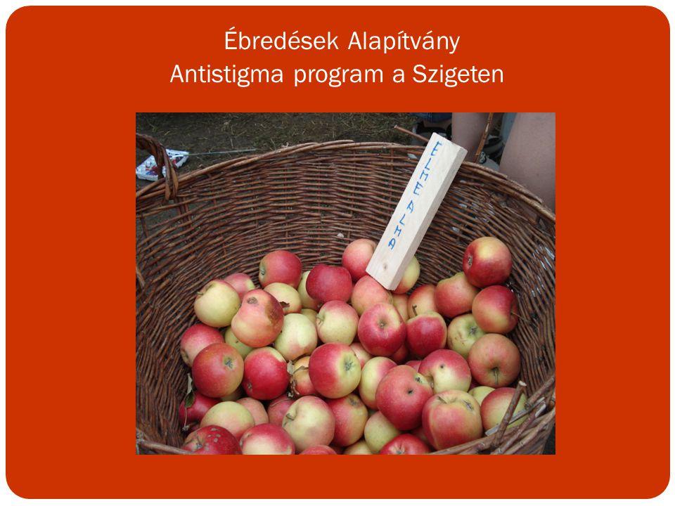 Ébredések Alapítvány Antistigma program a Szigeten