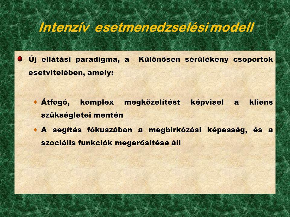 Intenzív esetmenedzselési modell