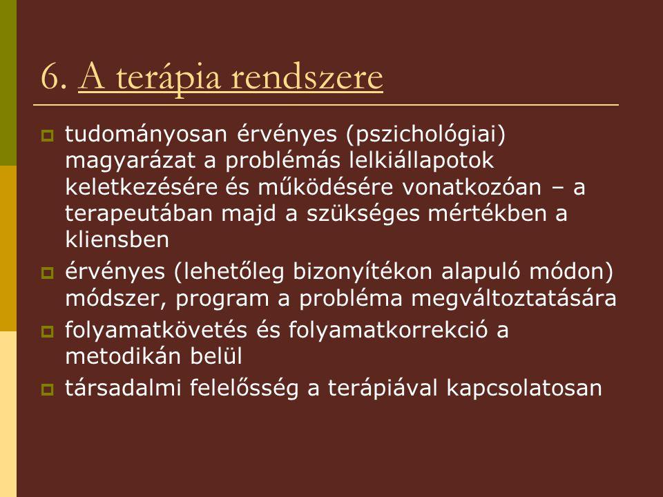 6. A terápia rendszere