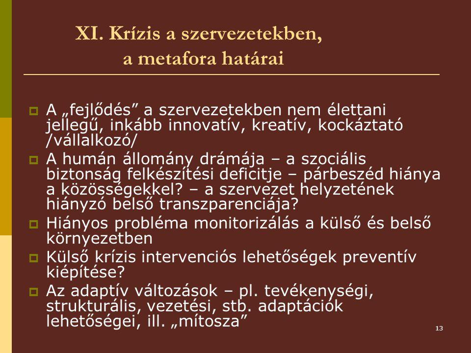 XI. Krízis a szervezetekben, a metafora határai