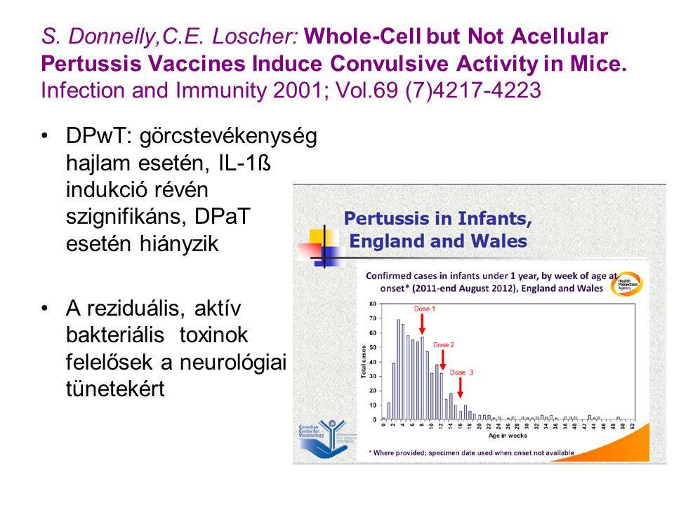 S. Donnelly,C.E. Loscher: Whole-Cell but Not Acellular Pertussis Vaccines Induce Convulsive Activity in Mice. Infection and Immunity 2001; Vol.69 (7)4217-4223