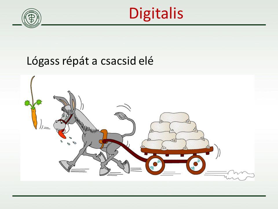 Digitalis Lógass répát a csacsid elé