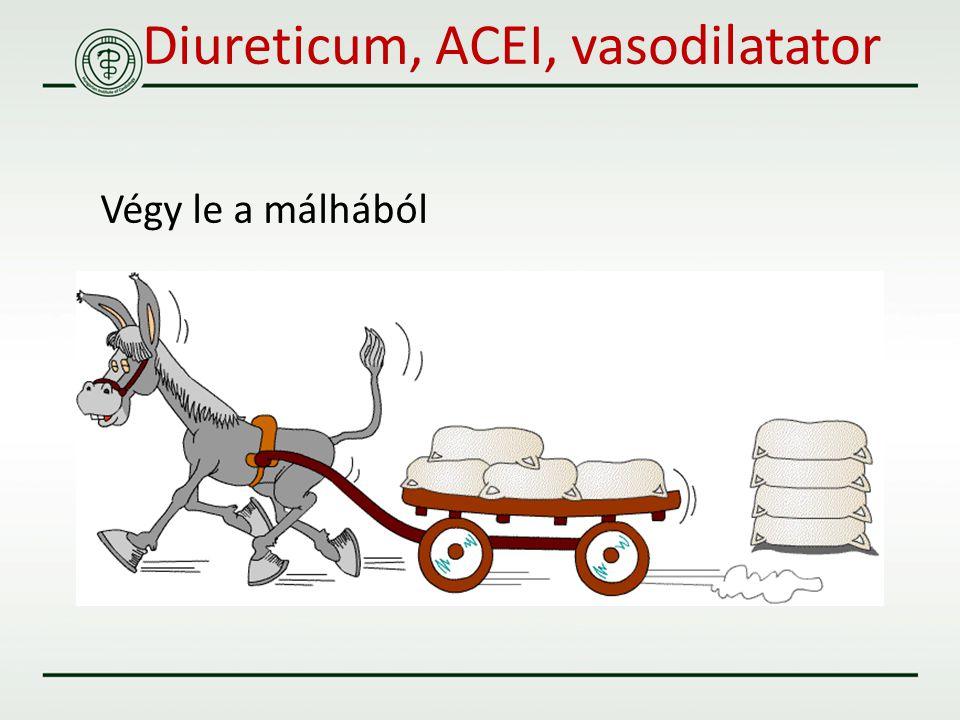 Diureticum, ACEI, vasodilatator