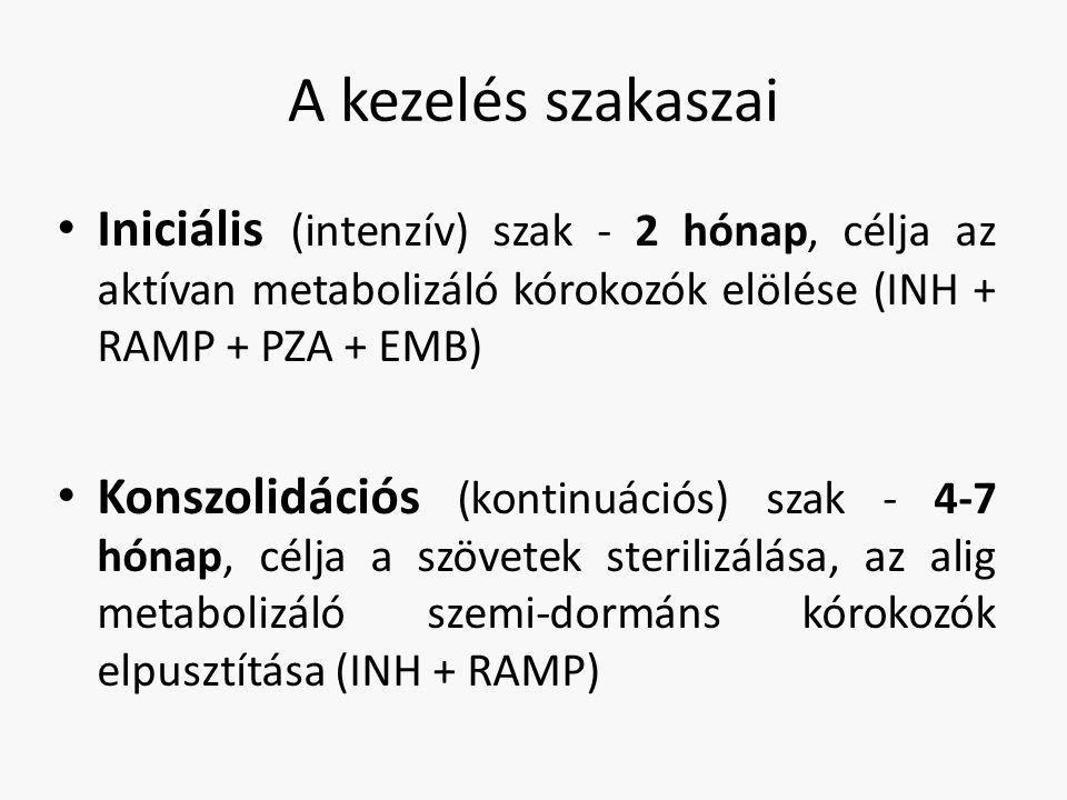 A kezelés szakaszai Iniciális (intenzív) szak - 2 hónap, célja az aktívan metabolizáló kórokozók elölése (INH + RAMP + PZA + EMB)