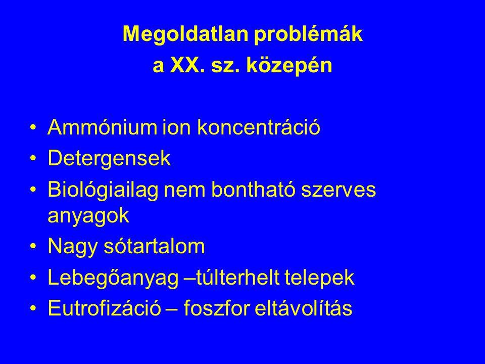 Megoldatlan problémák