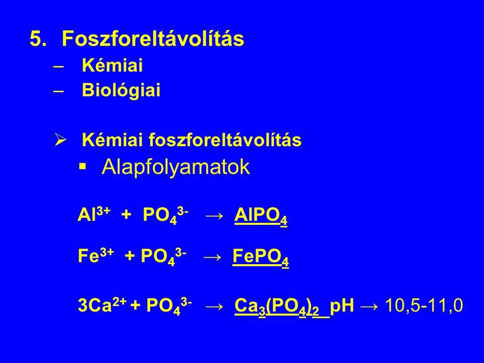 Foszforeltávolítás Alapfolyamatok Kémiai Biológiai