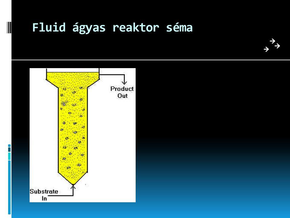 Fluid ágyas reaktor séma
