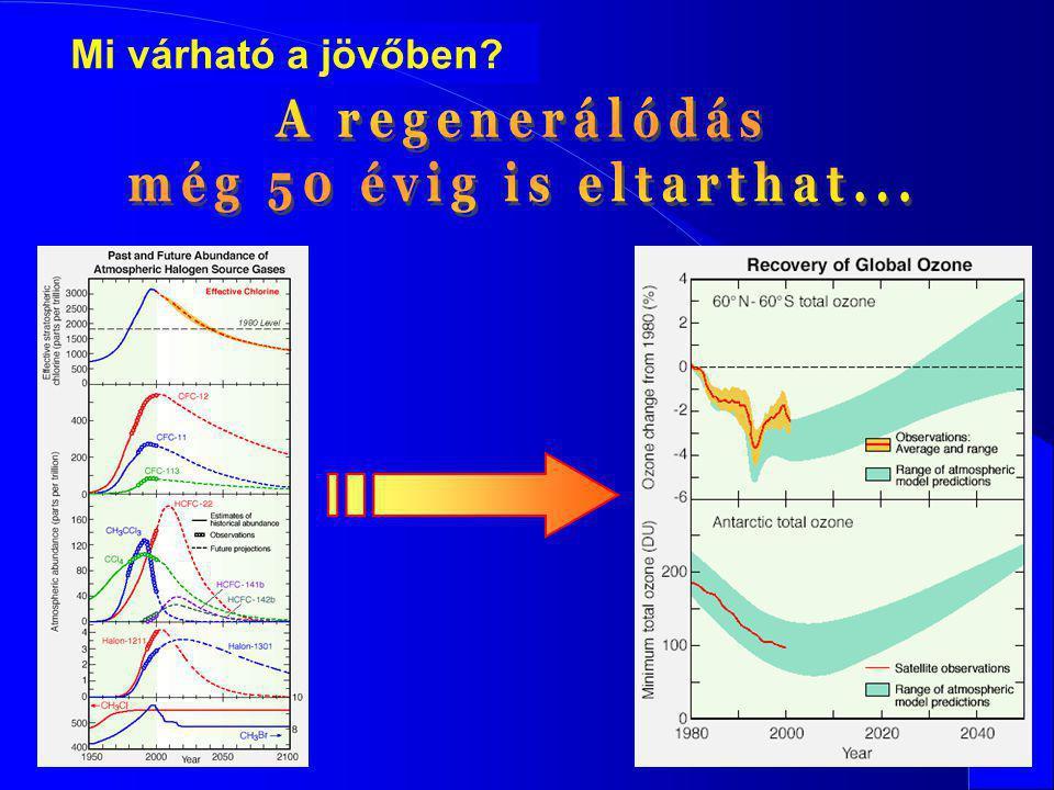 A regenerálódás még 50 évig is eltarthat...