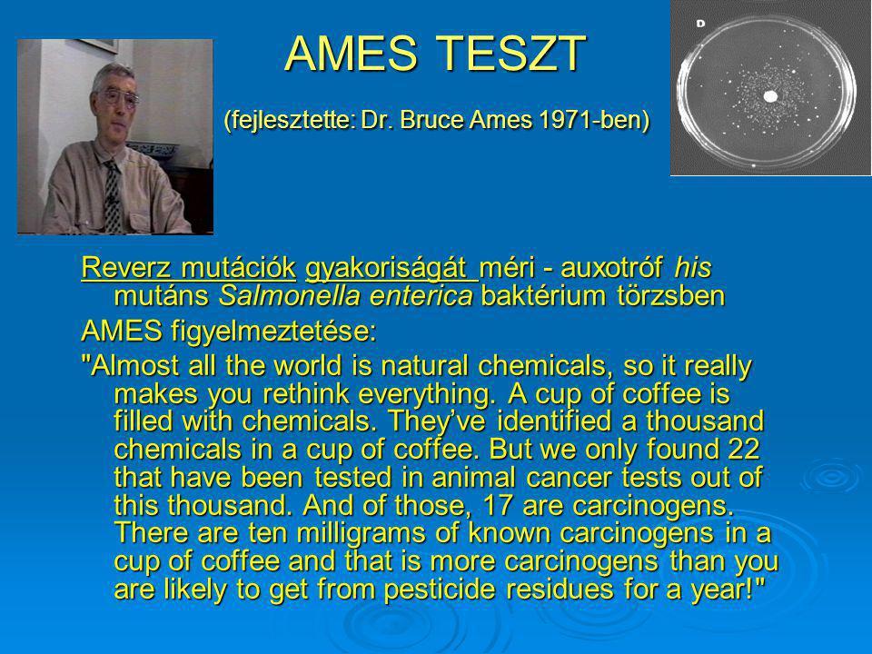 AMES TESZT (fejlesztette: Dr. Bruce Ames 1971-ben)