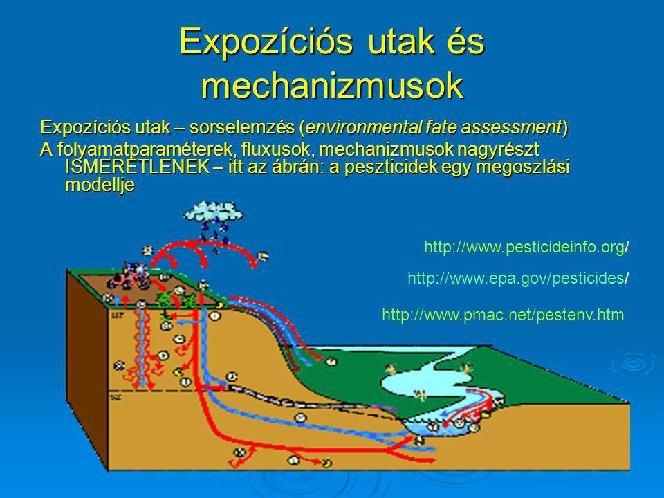 Expozíciós utak és mechanizmusok