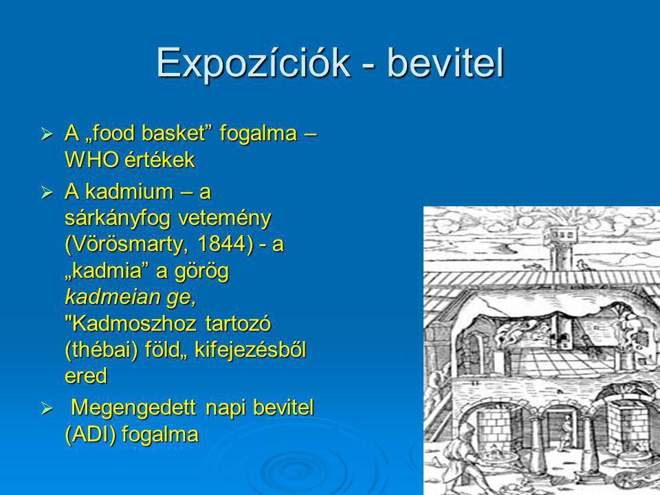 """Expozíciók - bevitel A """"food basket fogalma – WHO értékek"""