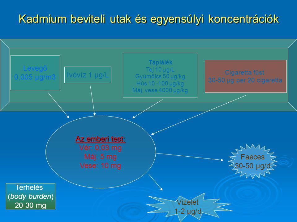 Kadmium beviteli utak és egyensúlyi koncentrációk