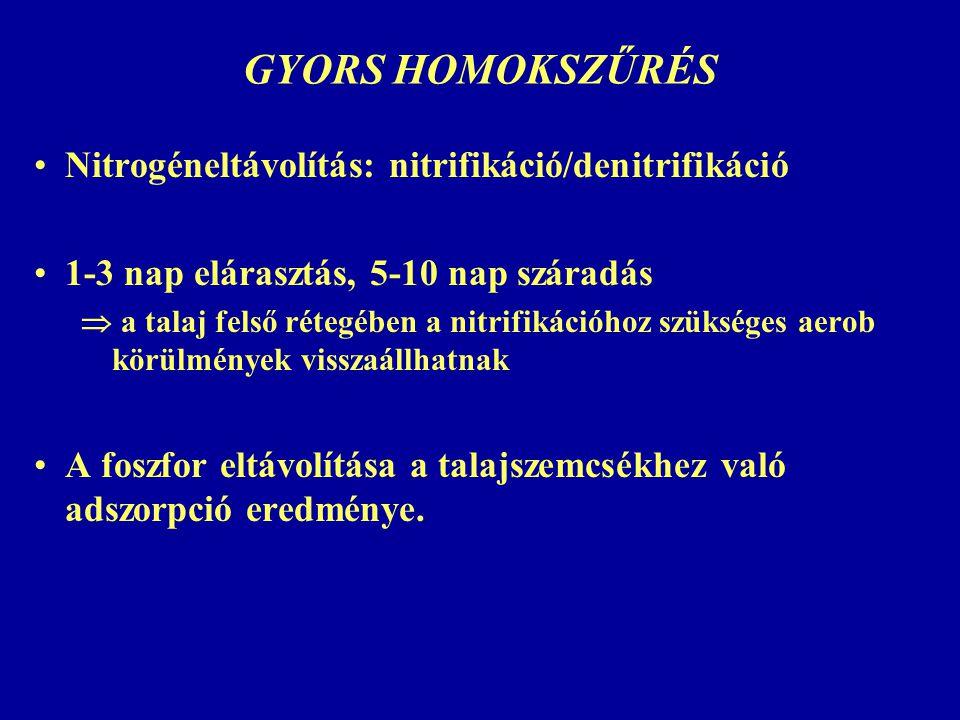 GYORS HOMOKSZŰRÉS Nitrogéneltávolítás: nitrifikáció/denitrifikáció