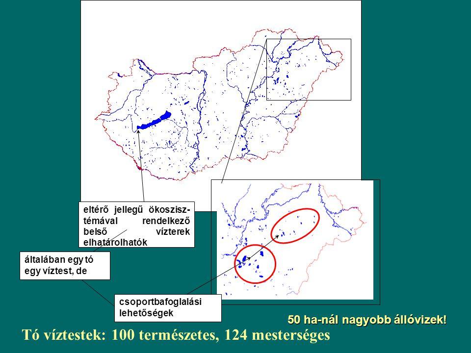 Tó víztestek: 100 természetes, 124 mesterséges