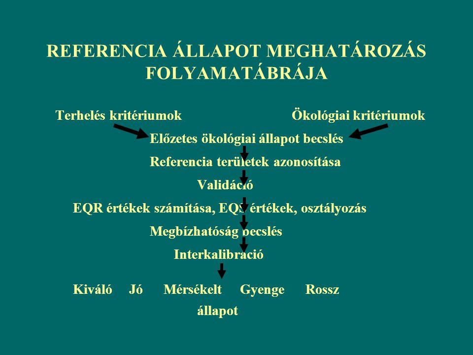 REFERENCIA ÁLLAPOT MEGHATÁROZÁS FOLYAMATÁBRÁJA