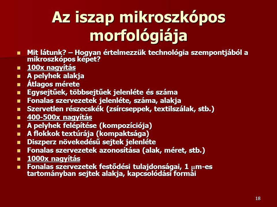 Az iszap mikroszkópos morfológiája