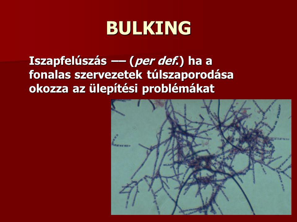 BULKING Iszapfelúszás –– (per def.) ha a fonalas szervezetek túlszaporodása okozza az ülepítési problémákat.