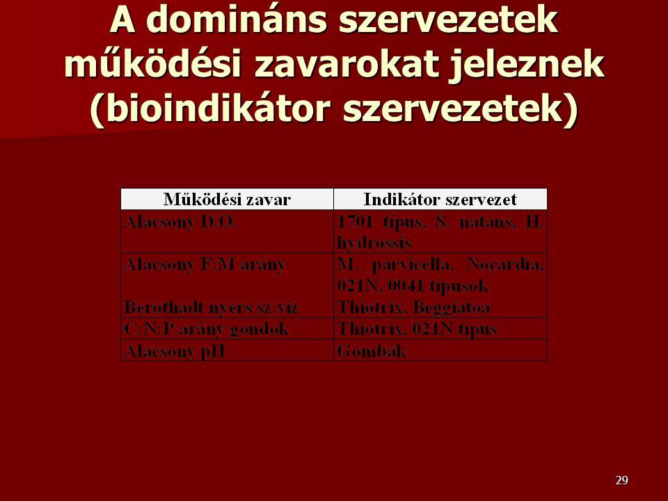 A domináns szervezetek működési zavarokat jeleznek (bioindikátor szervezetek)