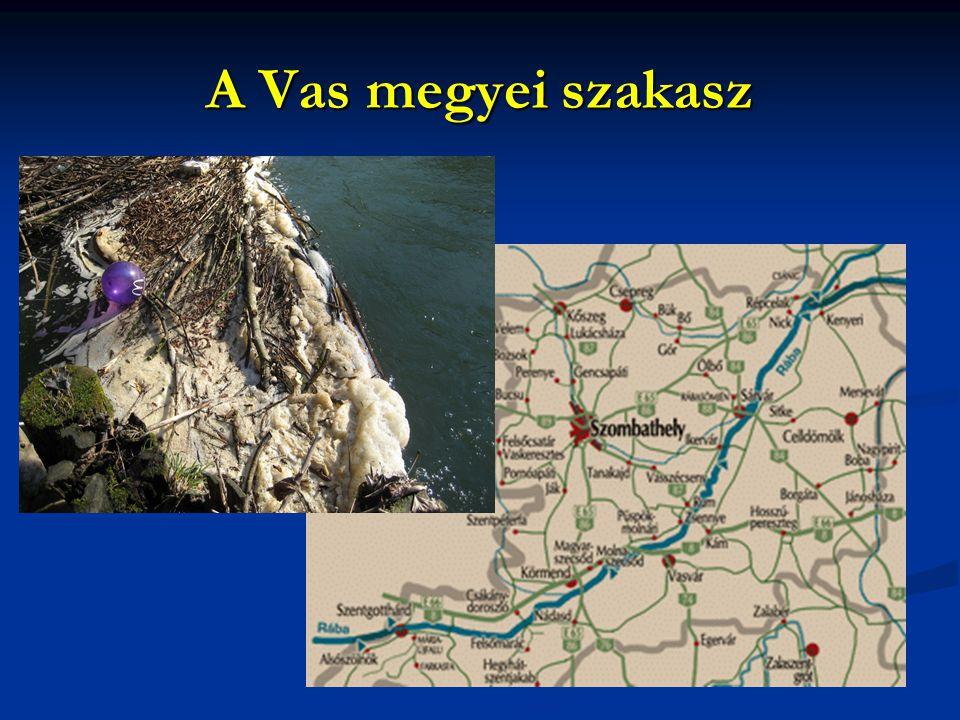 A Vas megyei szakasz
