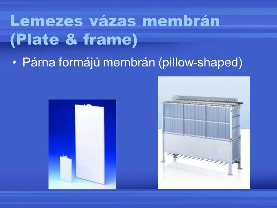 Lemezes vázas membrán (Plate & frame)