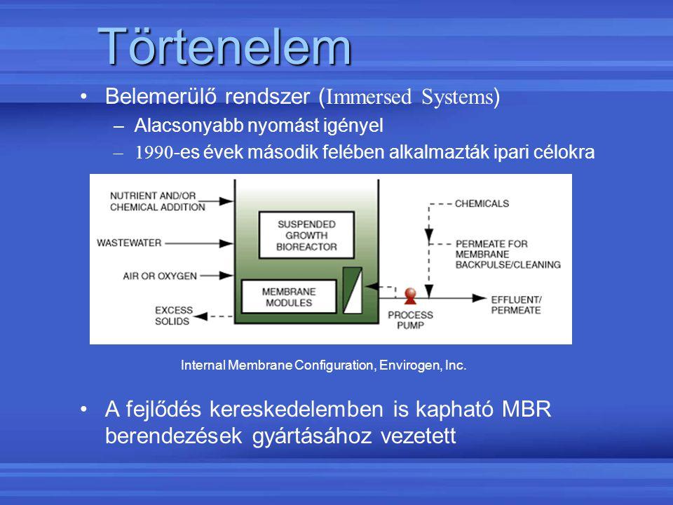 Törtenelem Belemerülő rendszer (Immersed Systems)