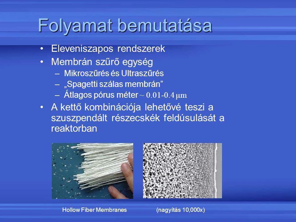 Folyamat bemutatása Eleveniszapos rendszerek Membrán szűrő egység