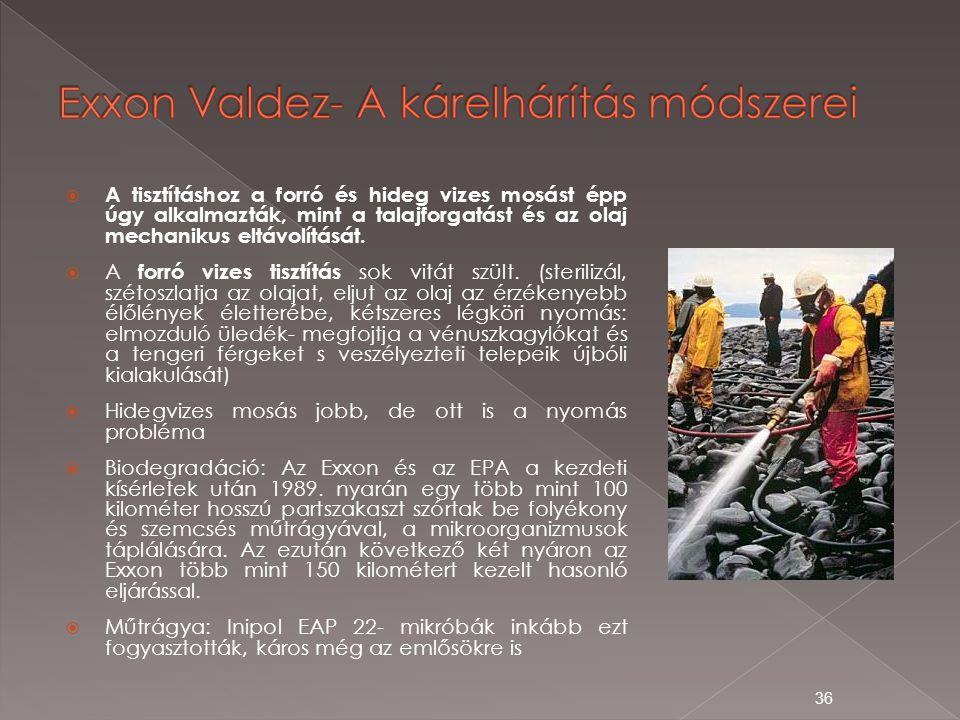 Exxon Valdez- A kárelhárítás módszerei