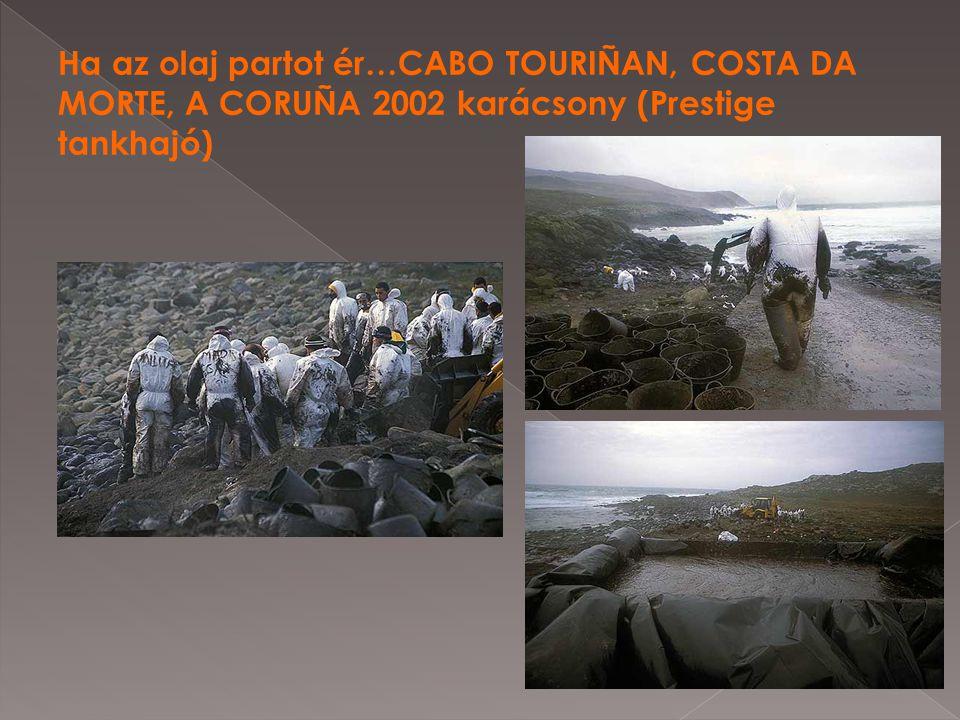 Ha az olaj partot ér…CABO TOURIÑAN, COSTA DA MORTE, A CORUÑA 2002 karácsony (Prestige tankhajó)