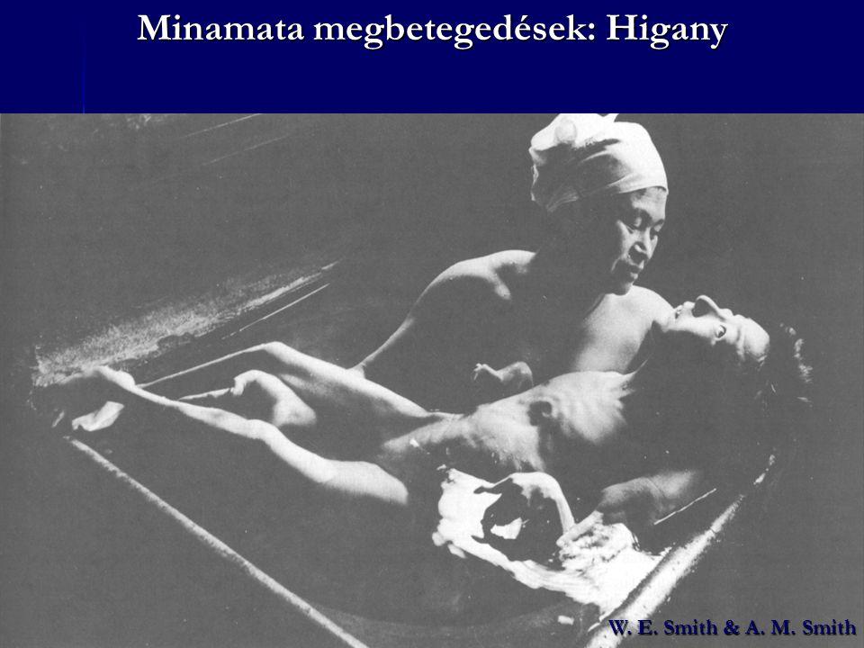 Minamata megbetegedések: Higany